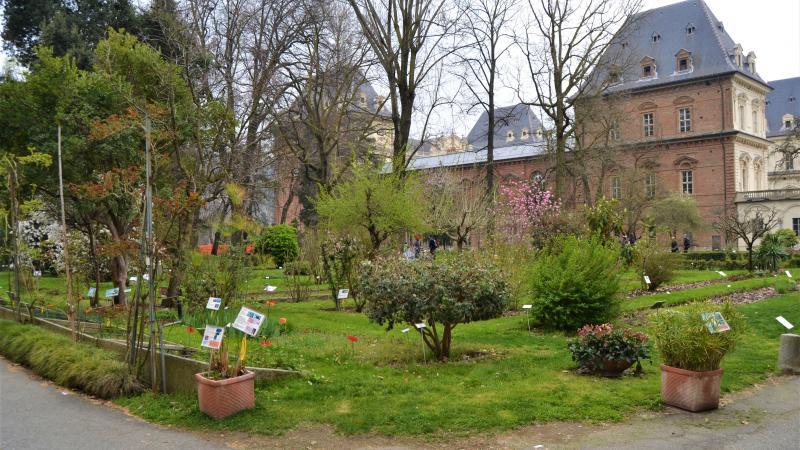 Il giardino sostenibile la mostra mercato all orto - L orto in giardino ...