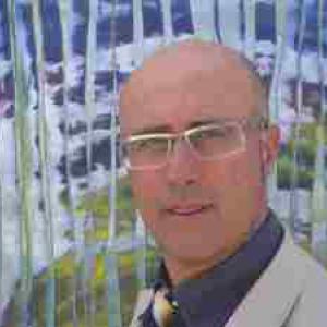 Mauro Giorgis